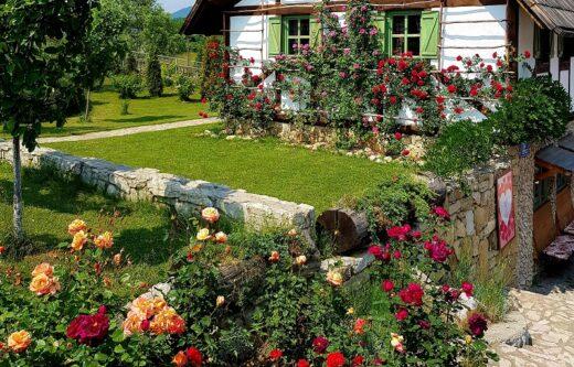 Uređenje okoliša kuće - livada, cvijeće